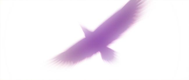 Aquila_PV04.jpg