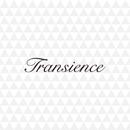 Transience ArtworkB